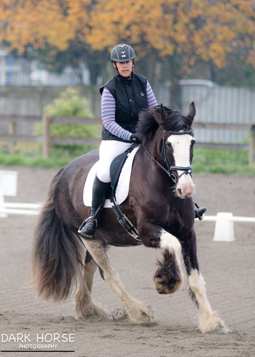TF Megan Solway Dressage