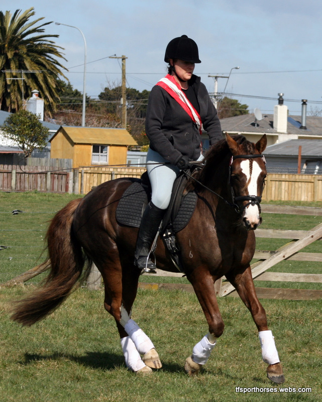 Sept Dressage Rally